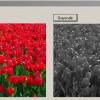 Pengolahan Citra Grayscale (Rata-rata RGB) C#